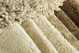 We can help with carpet